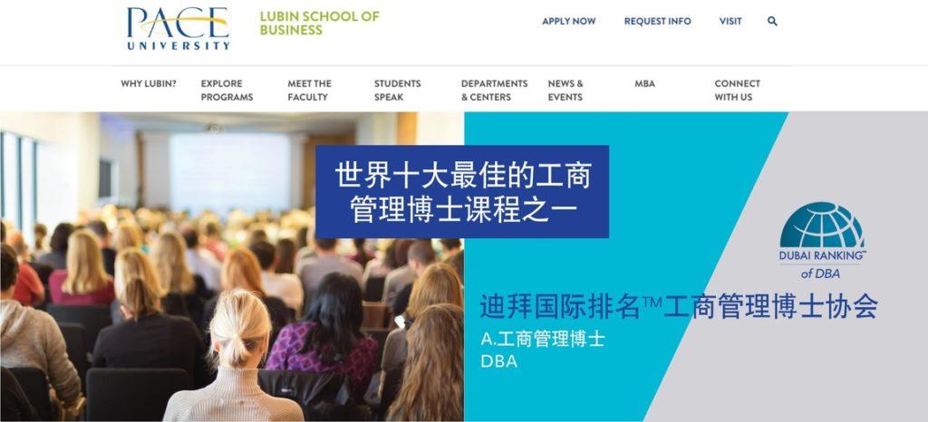 Web mockupDR Chinese2 scaled