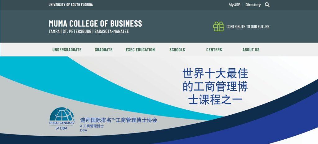 Web mockupDR Chinese3 scaled
